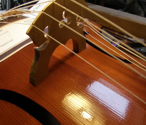 Luthier 2 mai 2015 (12).JPG