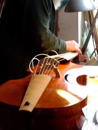 luthier 20210303 (10).jpg