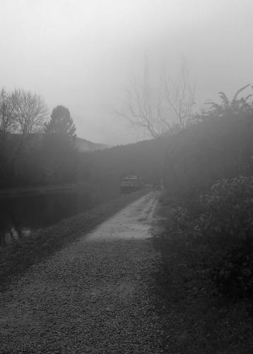 Noir et blanc  Jour 6.jpg