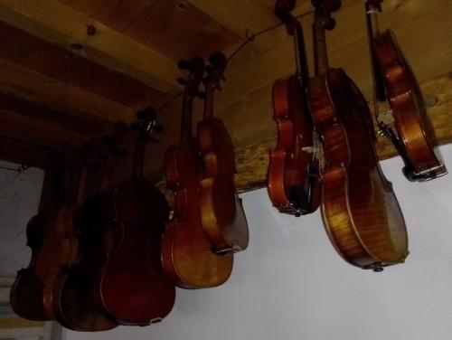 luthier 20210303 (11).jpg