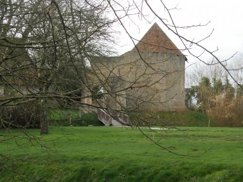 15022016 Château de Crêvecoeur (4).JPG