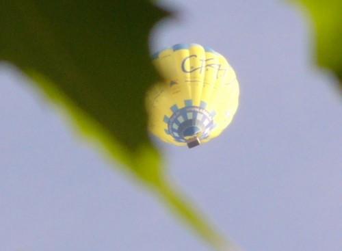 9 août 2014 Montgolfière (3).JPG