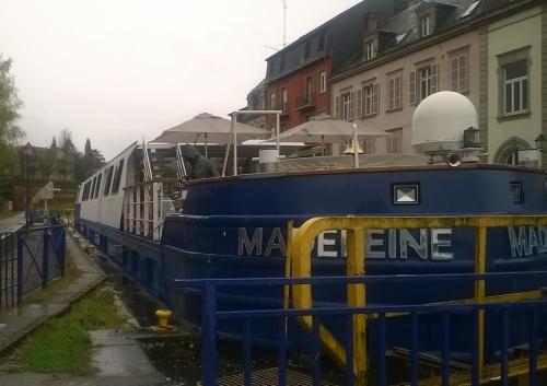 Madeleine 20190404 (2).jpg