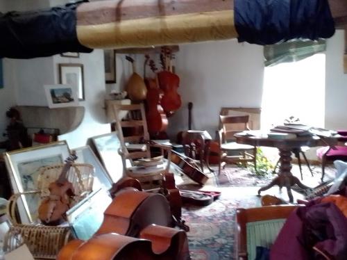 luthier 20210303 (4).jpg