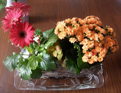 Anni 47 fleurs bis.JPG