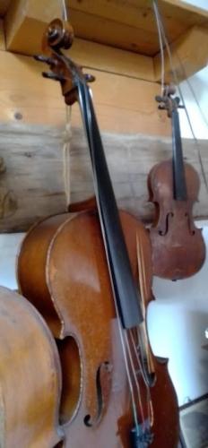 luthier 20210303 (15).jpg
