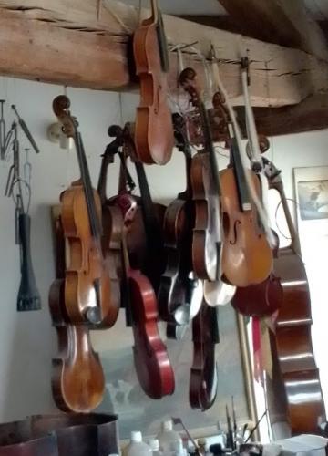 luthier 20210303 (8).jpg