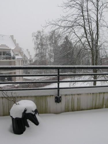 hiver janvier 2010.JPG